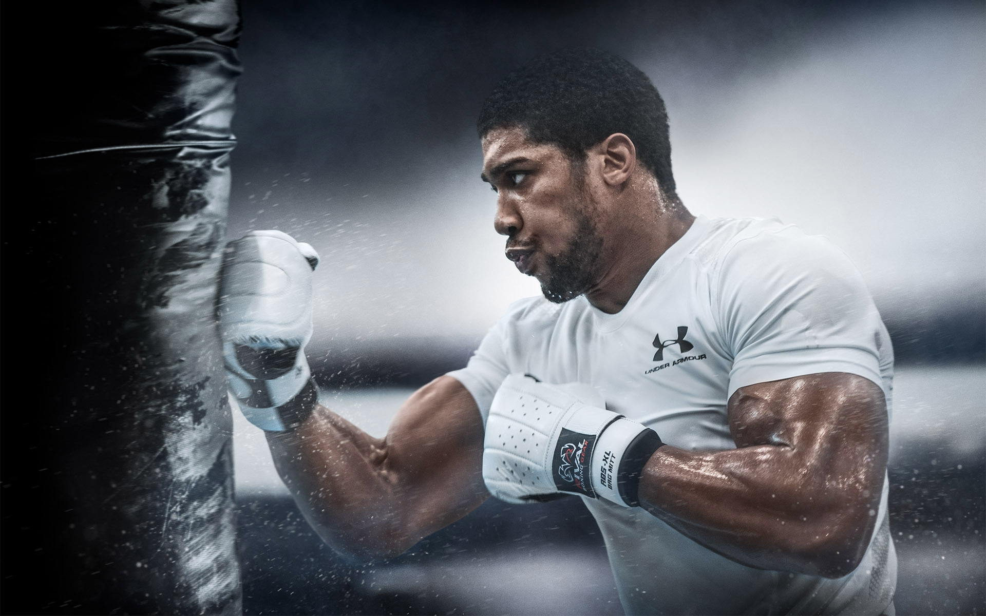 Anthony Joshua, IBF, WBO, IBO and WBA Heavyweight World Champion ©Paul Cooper